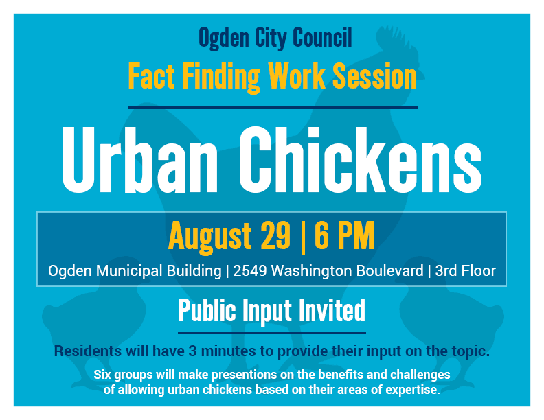 Urban Chickens Fact Finding Work Session Graphic