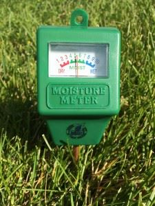 Moisture Meter in Ground