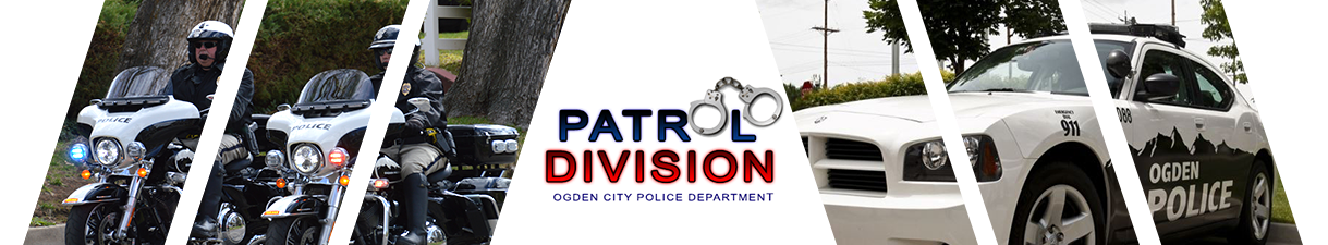 Patrol Division Banner W